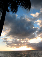 Palm_tree_and_clouds