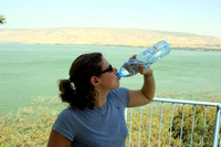 Tammy re-hydrating at the Kinneret