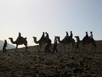 Riding_camels_through_the_desert