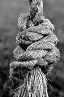 Ropeswing knot