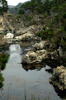 Point_Lobos_coastline_001
