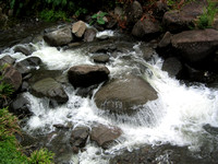 Water_flowing_off_of_round_boulder