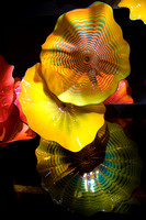Dale Chihuly Exhibit at the De Young 5461