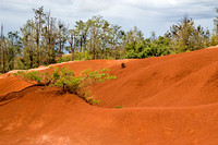 Red Dirt_3651